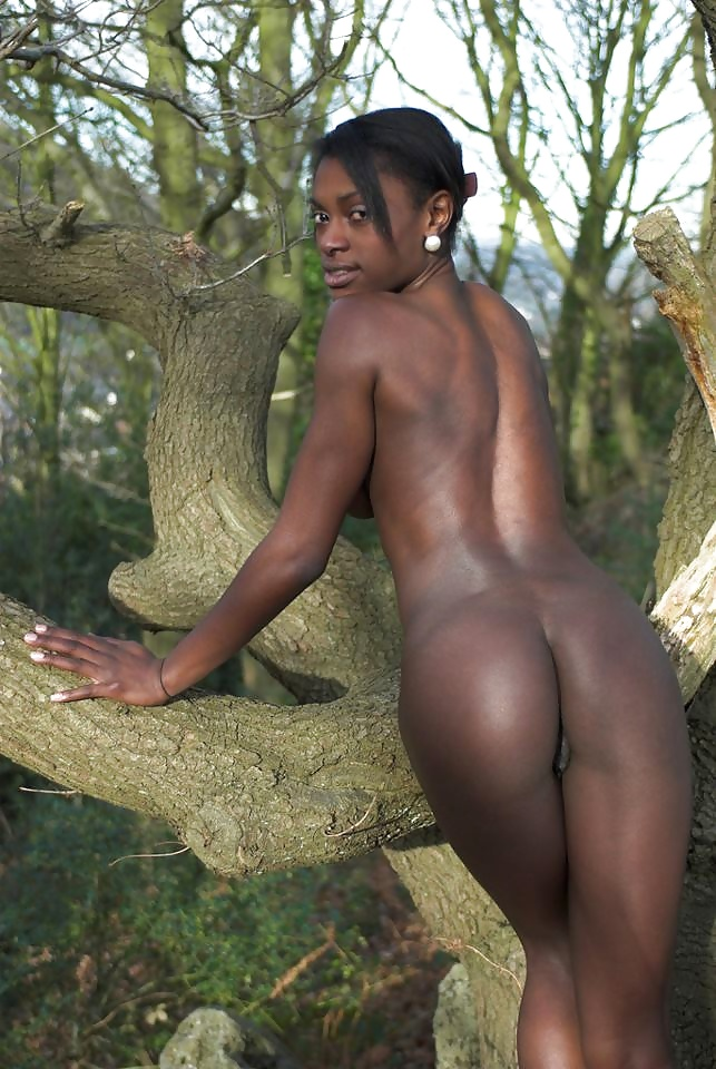 African Tribe nude ebony black archive - Photo